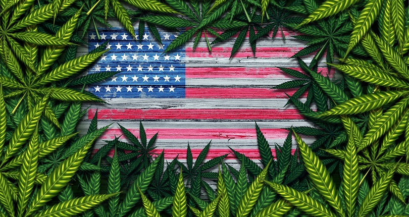 marijuana-surrounding-us-flag